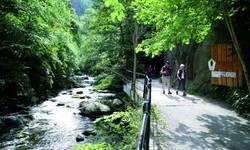 Wandern auf dem Selketal-Stieg im Harz